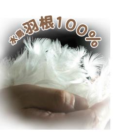 羽根布団8点セット 水鳥羽根100%