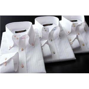 カラーステッチドゥエボットーニ・ホワイトドビーシャツ3枚セット M
