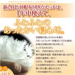 【ベッド専用】新20色羽根布団8点セット ベッドタイプ・ダブル ローズピンク