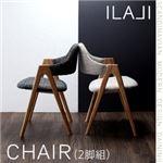 北欧モダンデザインダイニング【ILALI】イラーリ/チェア(2脚組) (カラー:チャコールグレイ) の詳細ページへ