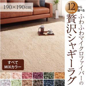 12色×4サイズから選べる すべてミックスカラー ふわふわマイクロファイバーの贅沢シャギーラグ 190×190cm アイボリー