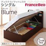 開閉&深さが選べるガス圧式跳ね上げ収納ベッド【Blume】 ブルーメ・ラージ S 【横開き】デュラテクノマットレス付 ホワイトの詳細ページへ