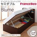 開閉&深さが選べるガス圧式跳ね上げ収納ベッド【Blume】 ブルーメ・ラージ SD 【横開き】デュラテクノマットレス付 ホワイトの詳細ページへ