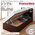 開閉&深さが選べるガス圧式跳ね上げ収納ベッド【Blume】 ブルーメ・ラージ S 【横開き】羊毛デュラテクノマットレス付 ホワイトの詳細ページへ