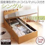 収納ベッド 【Freeda】