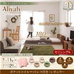 2万円で買えるセミシングルベッド