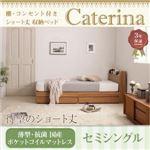 5万円で買えるセミシングルベッド