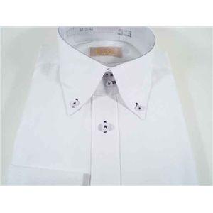 ファルチ ニューヨーク F-BD PU #3L(41-86) ワイシャツ Falchi New York