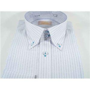 ファルチ ニューヨーク F-BD S.BL #5L(41-86)ワイシャツ Falchi New York