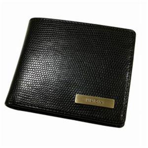 KRIZIA(クリッツィア)LIZARDライン 2折財布ブラック