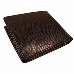 KRIZIA(クリッツア)LIZARDライン 2折財布ブラウン