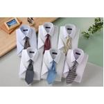 銀座・丸の内のOL100人が選んだ 半袖ワイシャツ&ネクタイセット 50217 シャツサイズ L ワイシャツ6枚 ネクタイ8本 セット