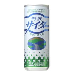 創健社 丹沢サイダー(甘さひかえめ) 250ml×30本