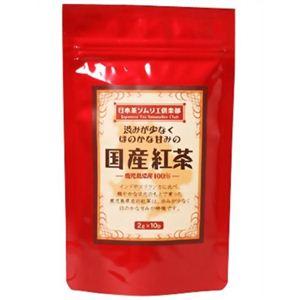 日本茶ソムリエ倶楽部 国産紅茶 ティーバッグ 2g×10P【6セット】