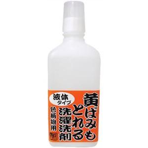 黄ばみもとれる洗濯洗剤 色柄物用 750ml 【2セット】