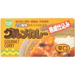 健康フーズ グルメカレー 辛口 120g 【9セット】