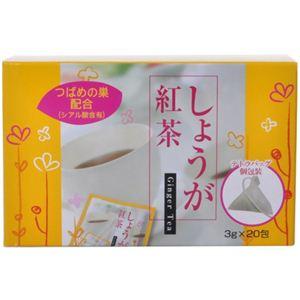 本草 しょうが紅茶 3g×20包【2セット】