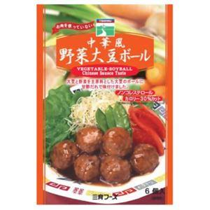 三育 中華風大豆ボール 100g【8セット】