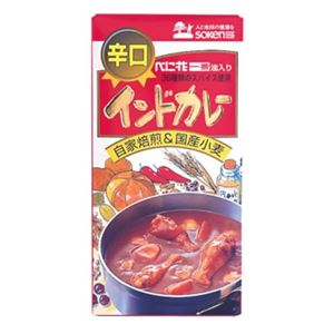 創健社 インドカレー 辛口 115g【5セット】