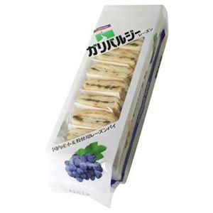 三育 ガリバルジー レーズン 10枚入 【3セット】