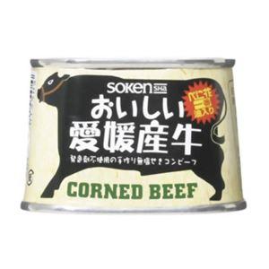 創健社 おいしい愛媛産牛コンビーフ 100g【3セット】