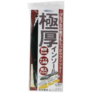 極厚インソール(サイズ調整用) L 【2セット】
