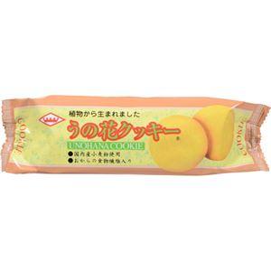 キング製菓 うの花クッキー 【22セット】