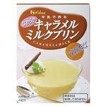 キャラメルミルクプリン 47g 【28セット】の詳細ページへ