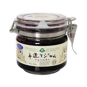 手造りジャム プレザーブスタイル ブルーベリージャム 530g 【2セット】