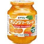 カンピー オレンジマーマレード 850g 【3セット】の詳細ページへ
