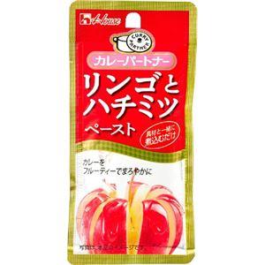 カレーパートナー リンゴとハチミツペースト 40g 【42セット】