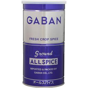 ギャバン 業務用 オールスパイス 300g 【2セット】