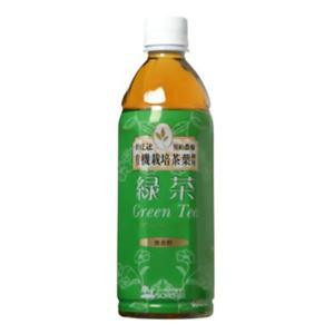創健社 緑茶 500ml×24本