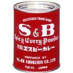 (まとめ買い)S&B 業務用カレー粉 400g×2セットの詳細ページへ