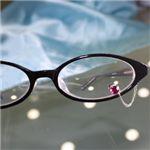 眼鏡につける新感覚ジュエリー Eye Jewel 1ガーネット
