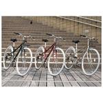 PRIMARY(プライマリー) 6段変速 クロスバイク BGC-700-RD レッド