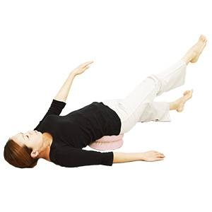 体幹筋トレーニング器具 waist twister(ウエストツイスター)