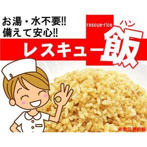 災害時などに安心便利 レスキュー飯 10食セット ホタテ