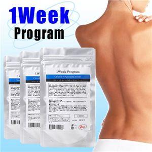 1WEEK プログラム