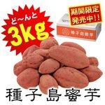 夢百笑 種子島蜜芋 3Kg 【安納芋(あんのういも)】