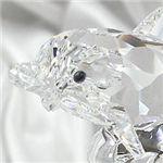 Swarovski (スワロフスキー) 678507 Bebe dauphin