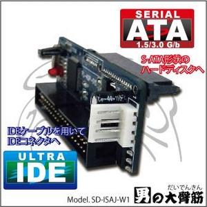 AREA(エアリア) 男の大臀筋 (おとこのだいでんきん) SD-ISAJ-W1