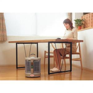 遠赤外線パネルヒーター 暖話室1000型G