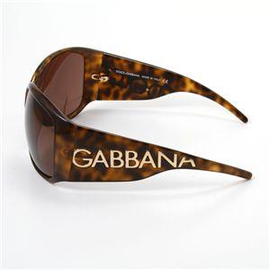 02ドルチェ&ガッバーナ/DOLCE&GABBANA サングラス6026-502/73