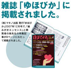 薬用デンタルホワイト プロ フレッシュミント 【医薬部外品】