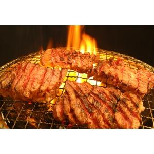 亀山社中 焼肉 計4kgセットB 【華咲きハラミ400g×4、華咲きカタロース400g×6 、ハサミ、レシピ付き】