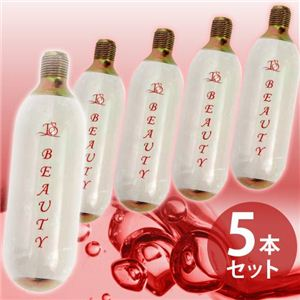 生炭酸ミストシャワー reju.pou 専用炭酸ミニガスカートリッジ 5本