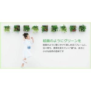 【4月27日まで】サントリー ミドリエデザイン『フレーム』 母の日限定デザイン ブラック