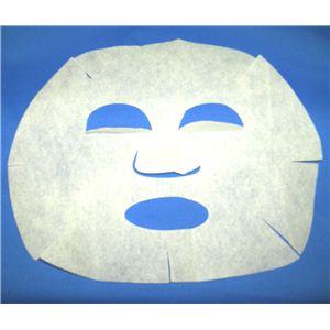 プラソニエアクア 毛穴クリーンDuo(フェイシャルマスク1枚付き)