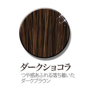 age嬢モデル愛用☆ Queen bee(クイーンビー) ヘアーウィッグ W3004/ダークショコラ
